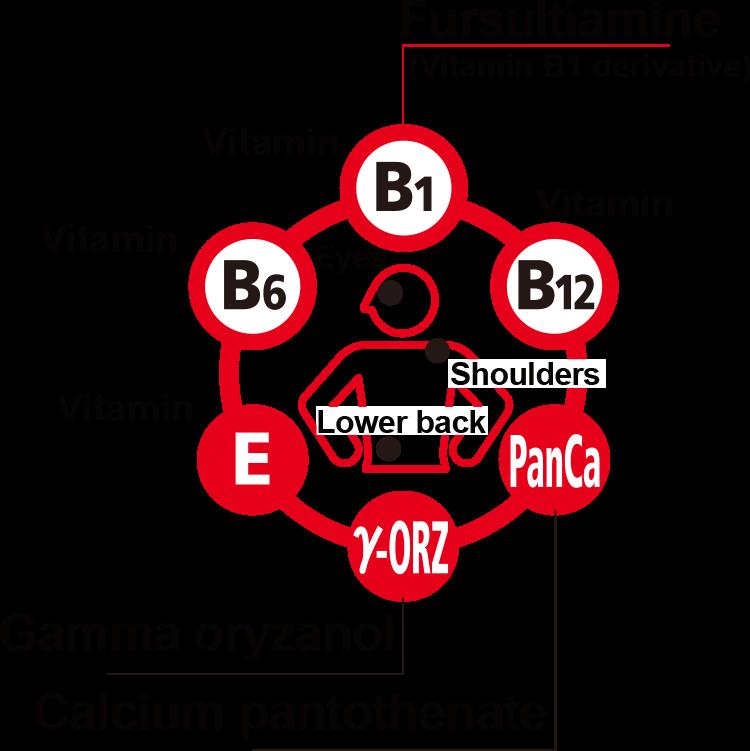 http://takeda-kenko.jp/assets/img/en/products/vitamin/al_ex/img_01.png