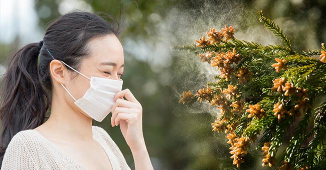 「花粉症 」の画像検索結果