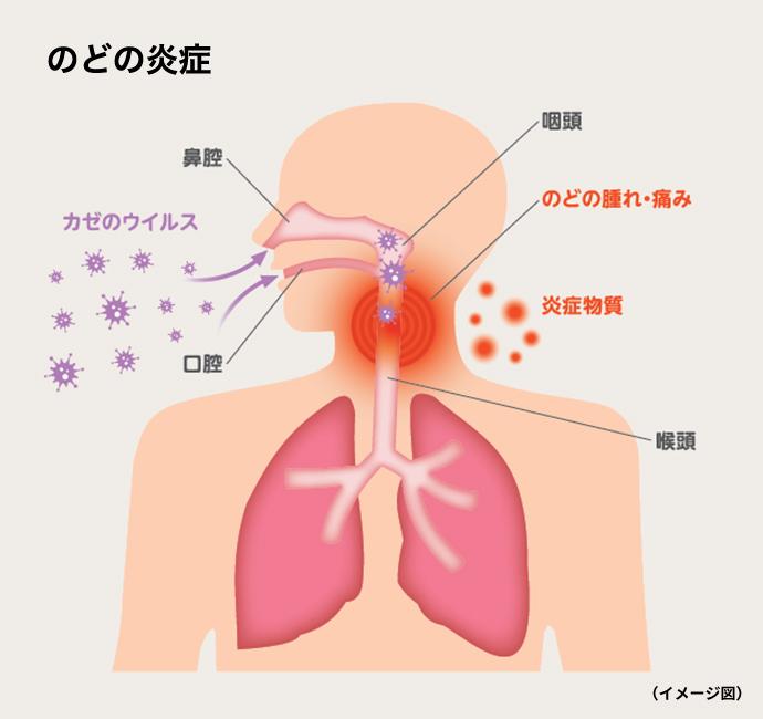 喉 の 違和感 風邪