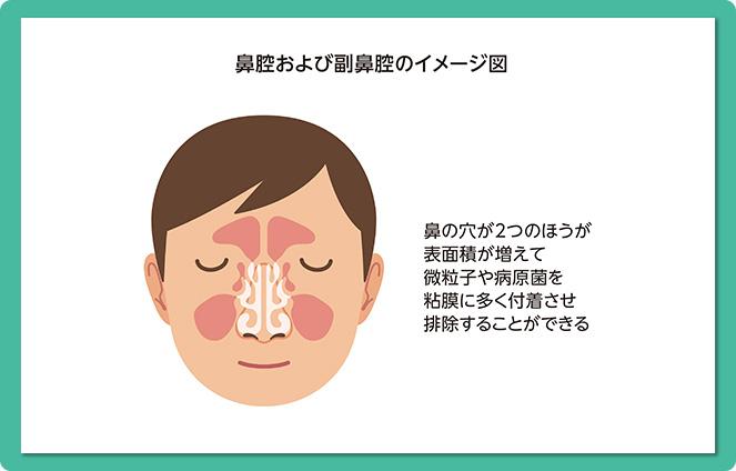 溜まる 鼻くそ が 鼻くそがすぐたまる人の特徴、掃除の頻度や方法、鼻ほじりで鼻の穴が大きくなるのか調べてみた!